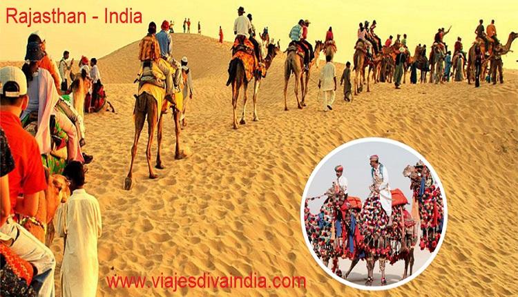 Camellos en Desierto de Rajasthan