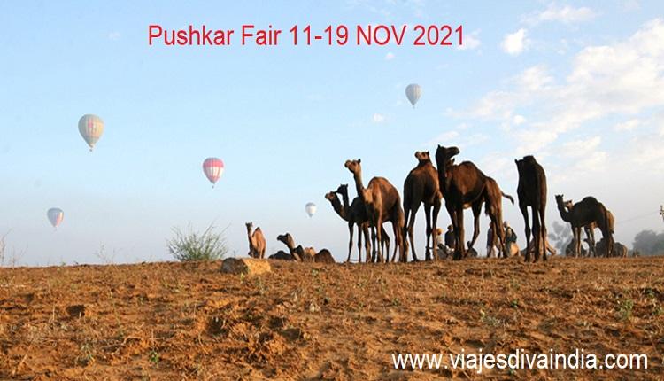 Feria de camello de Pushkar 2021