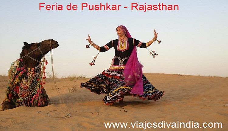 Feria de camello de pushkar Rajasthan